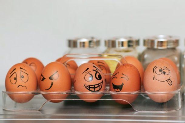 eggs going crazy